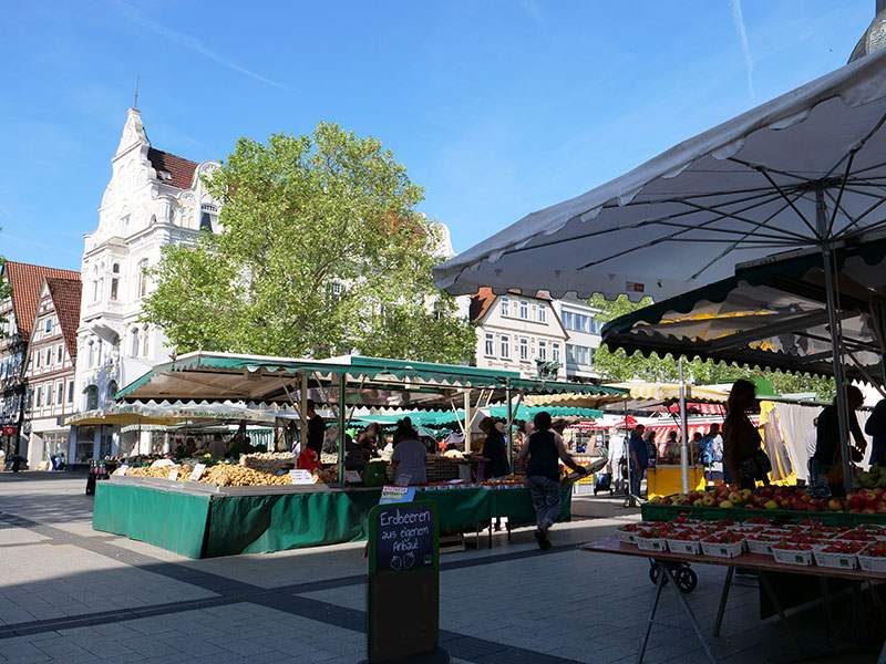 Markttage in Detmold